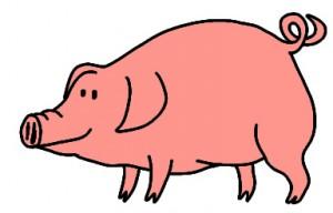 cochon-rose