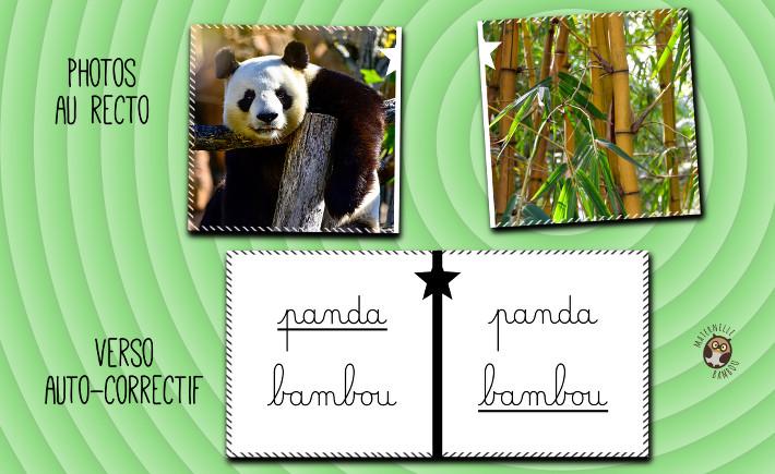 Jeu qui mange quoi jeu de cartes imprimer maternelle bambou - Animal qui mange les fourmis ...
