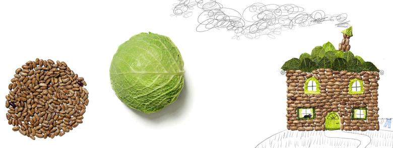 Haricots coco et feuilles de chou - Les légumes, quelle aventure !