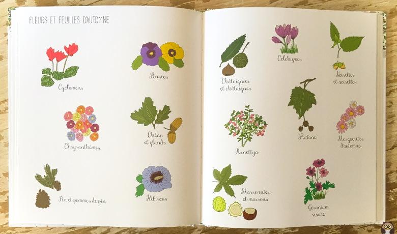 Fleurs et feuilles d'automne - Amélie Biggs Laffaiteur