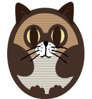 Bambou Chat - thème des chats en maternelle