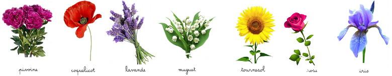 imagier de fleurs - la Maternelle de Bambou