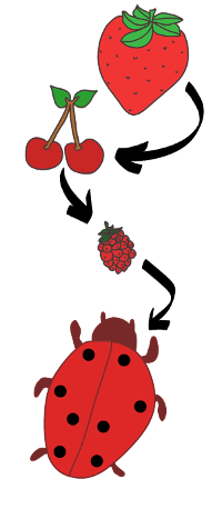 J'aime le rouge - fraise - cerise - framboise - coci