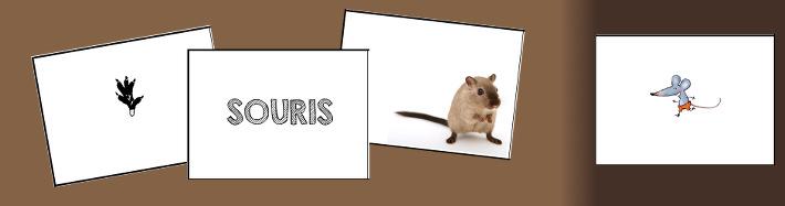 jeu-cartes-la-moufle-souris
