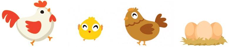 coqs poules œufs et poussins