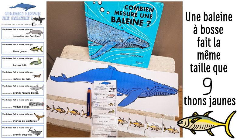combien mesure une baleine