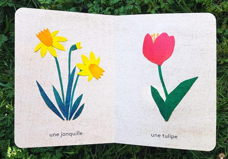 L'imagier des fleurs du jardin : jonquille et tulipe