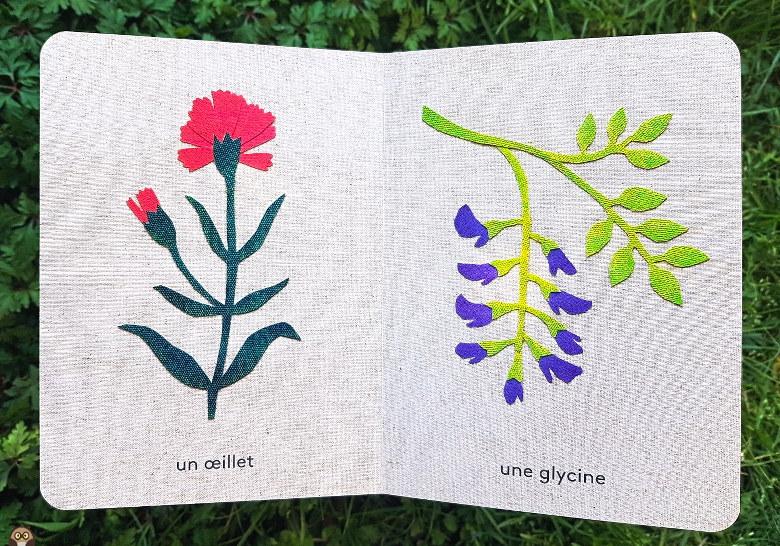L'imagier des fleurs du jardin : œillet et glycine