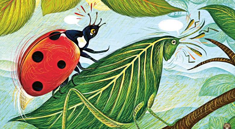 sauterelle-feuille - Vertige d'Isabelle Simler