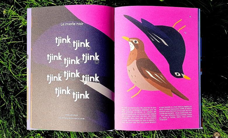Je suis un oiseau de la ville : le merle noir.